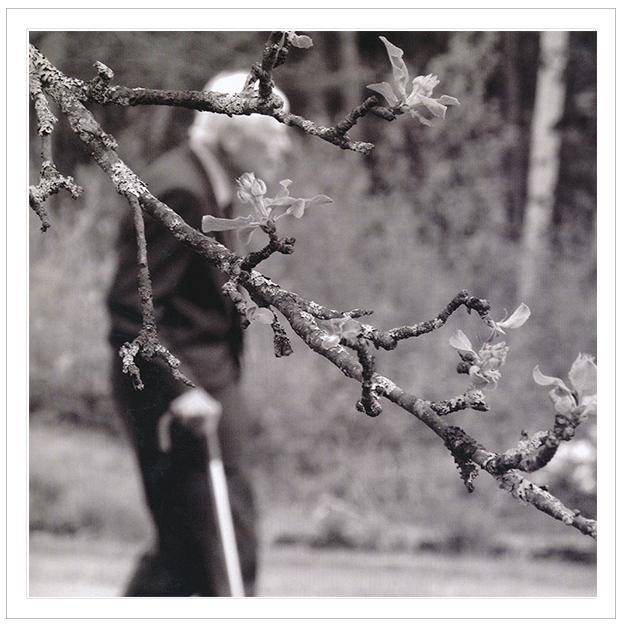 17 พฤษภาคม 2554 โปรเฟสเซอร์เดินในสวน